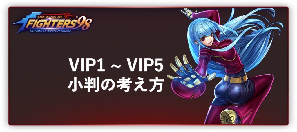 VIP 1 ~ VIP 5 ユーザの考え方